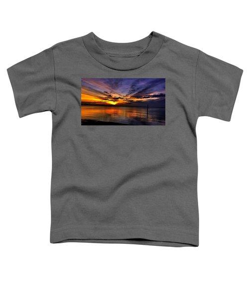 Charleston Gold Toddler T-Shirt