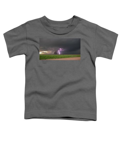 Chasing Naders In Nebraska 017 Toddler T-Shirt