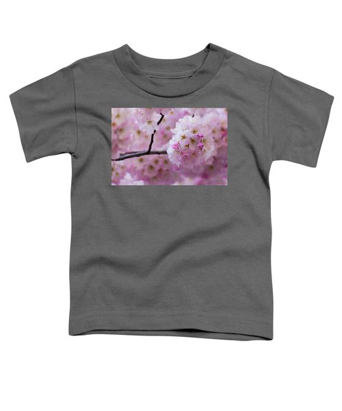 Cherry Blossom 8624 Toddler T-Shirt