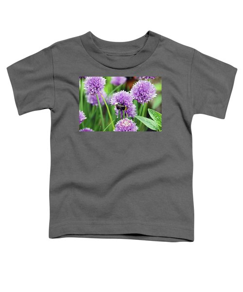 Chorley. Picnic In The Park. Bee In The Chives. Toddler T-Shirt
