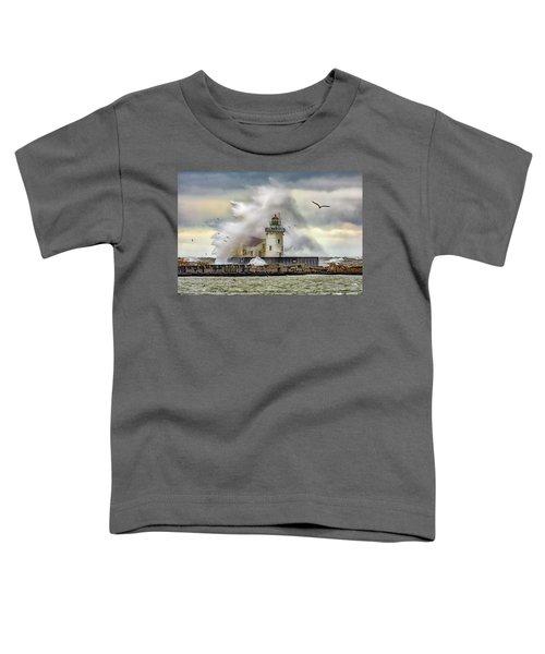 Cleveland Lighthouse Storm  Toddler T-Shirt