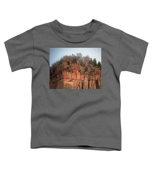 Cliff Face Hz Toddler T-Shirt