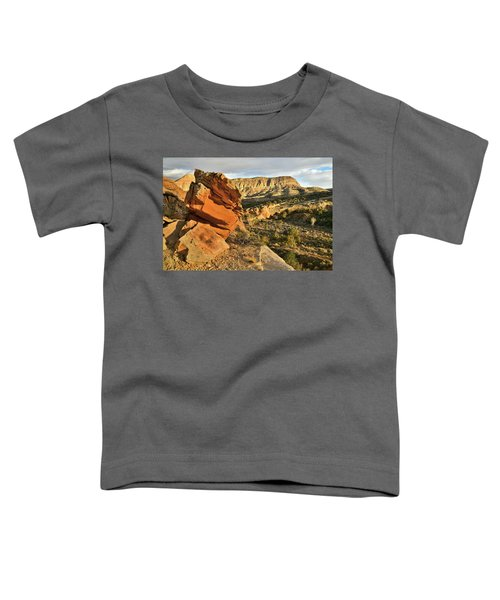 Cliffside Rock Cropping In Colorado National Monument Toddler T-Shirt