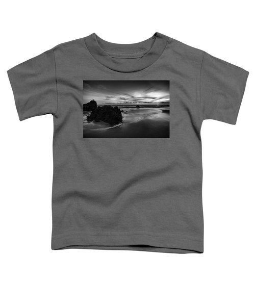 Coastal Light IIi Toddler T-Shirt
