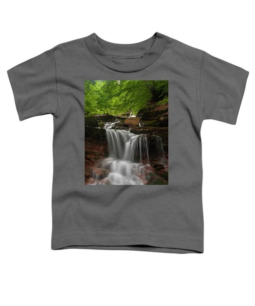 Cold River Toddler T-Shirt