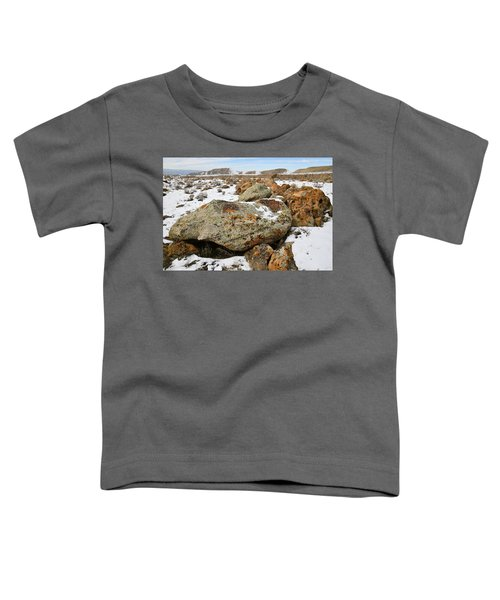 Color In The Book Cliff Desert Toddler T-Shirt