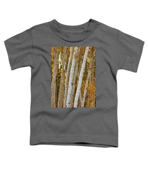 Colorado Aspens Toddler T-Shirt