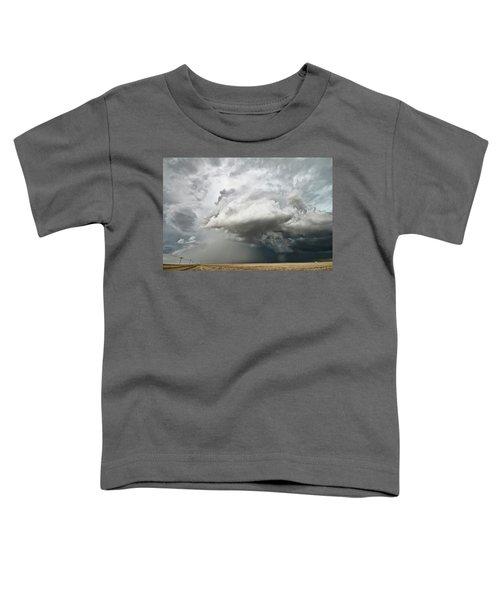 Colorado Sky Toddler T-Shirt