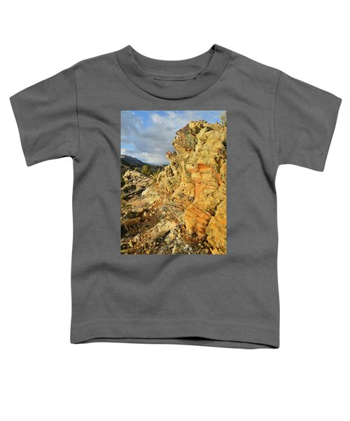 Colorful Entrance To Colorado National Monument Toddler T-Shirt