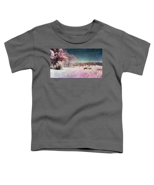 Colorful World Toddler T-Shirt