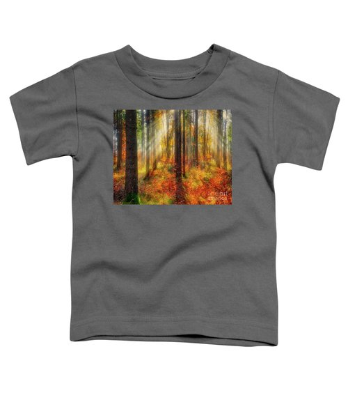 Colours Of Nature 02 Toddler T-Shirt