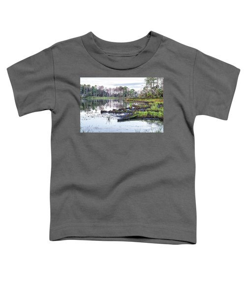 Coosaw - Early Morning Rice Field Toddler T-Shirt