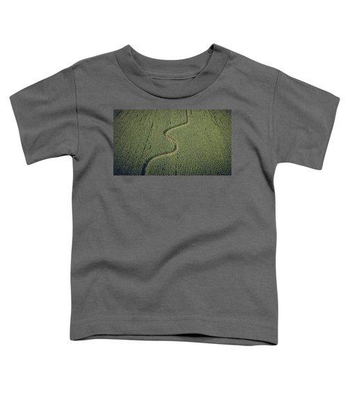 Corn Field Toddler T-Shirt