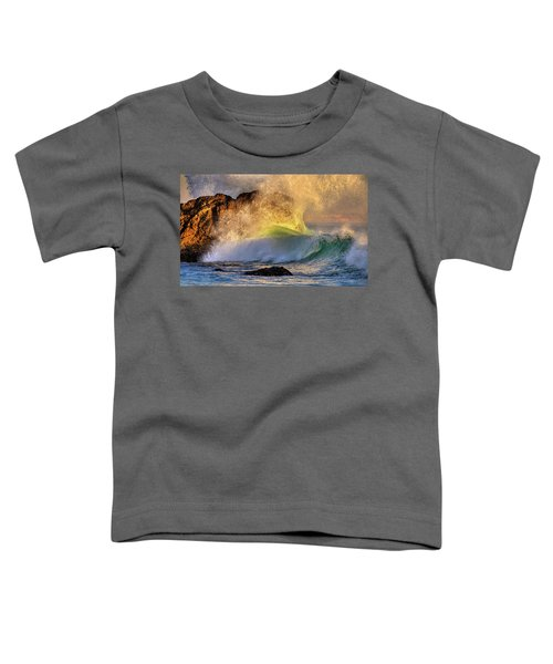Crashing Wave Leo Carrillo Beach Toddler T-Shirt