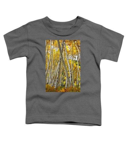 Crossed Aspens Toddler T-Shirt