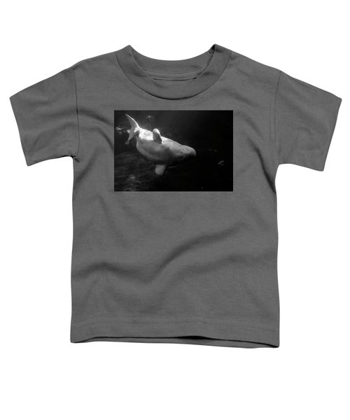 Curious Beluga Toddler T-Shirt