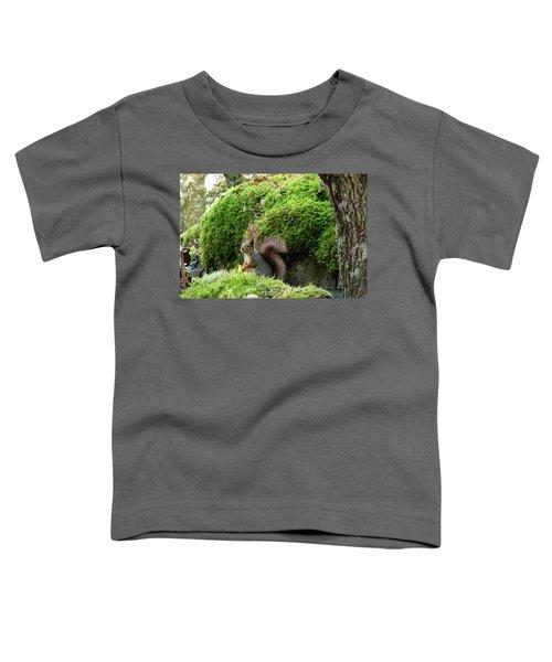 Curious Squirrel Toddler T-Shirt