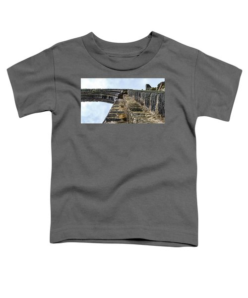 Dale Abbey Toddler T-Shirt