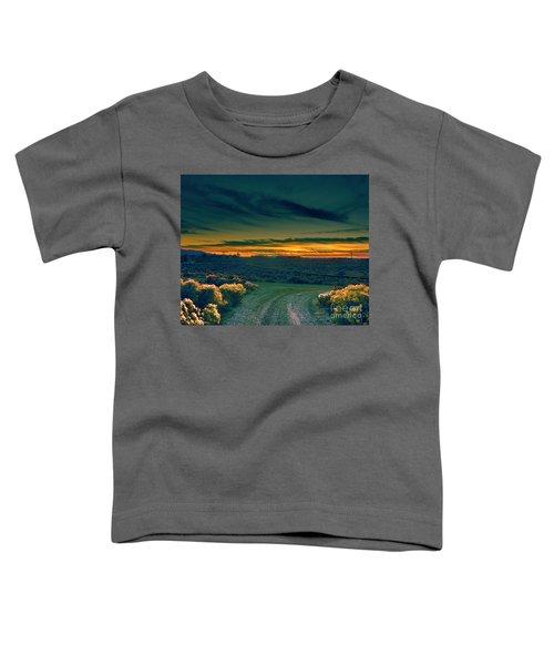 December Evening Toddler T-Shirt