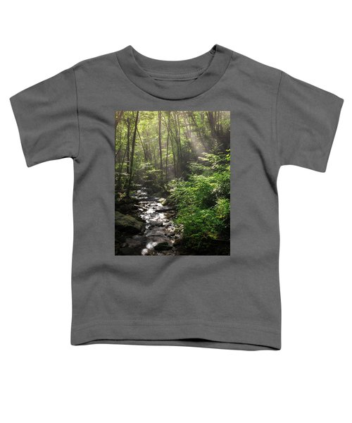 Deep In The Forrest - Sun Rays Toddler T-Shirt
