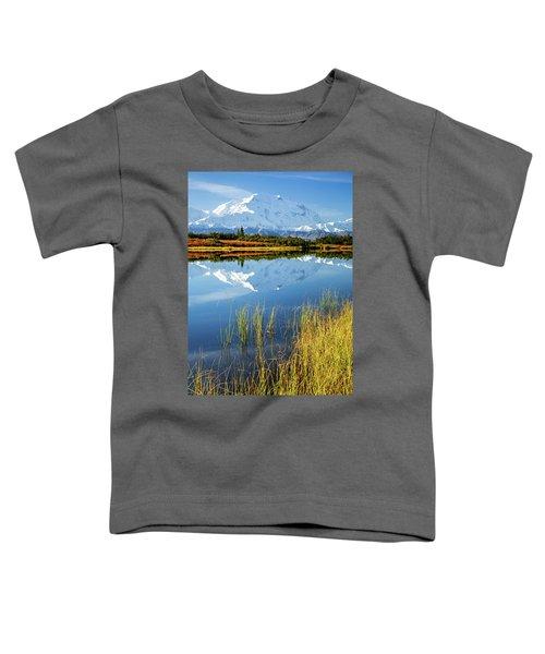 Denali Reflection Toddler T-Shirt