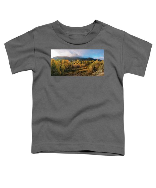 Early Morning Panorama Of Changing Aspens And Picacho Peak - Twomile Reservoir - Santa Fe New Mexico Toddler T-Shirt