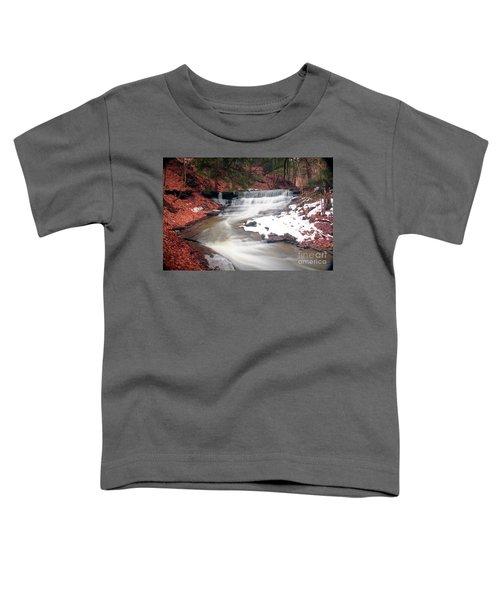 Emery Park South Wales Ny Toddler T-Shirt