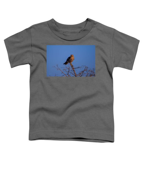 Evening Look Out Toddler T-Shirt