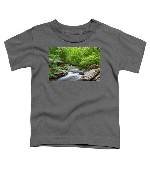 Fairfield Cascades Toddler T-Shirt