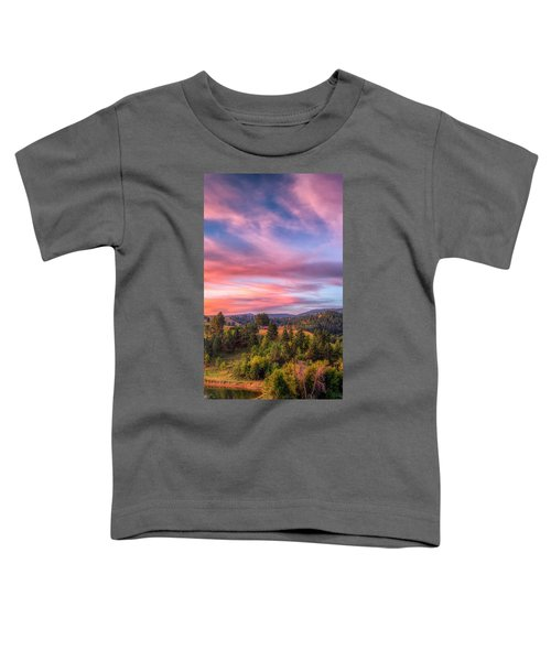 Fairytale Triptych 2 Toddler T-Shirt