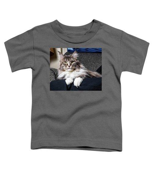 Feline Beauty Toddler T-Shirt