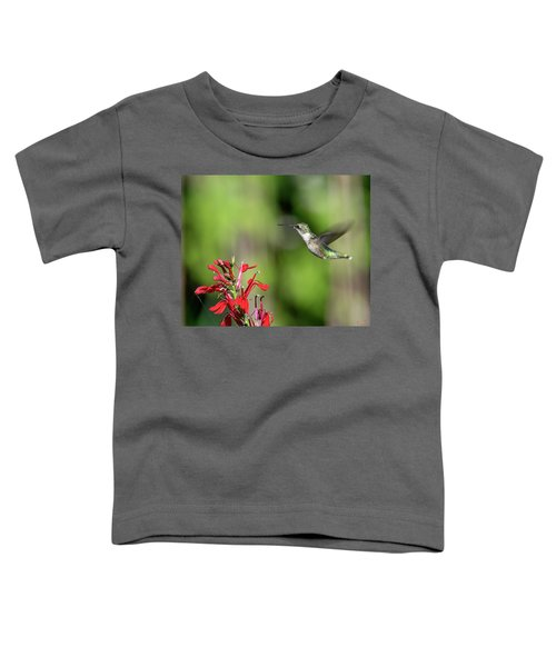 Female Ruby-throated Hummingbird Dsb0320 Toddler T-Shirt