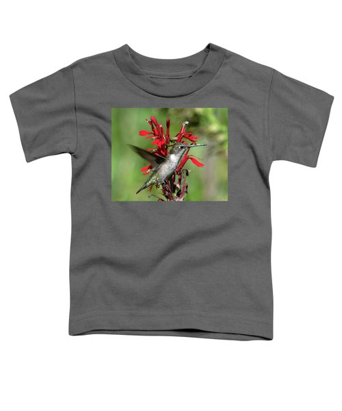 Female Ruby-throated Hummingbird Dsb0325 Toddler T-Shirt