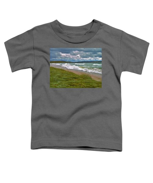Field Of Green On Lake Superior Toddler T-Shirt