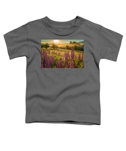 Fields Of Lupine Toddler T-Shirt