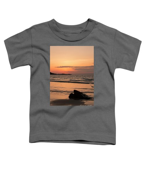 Fine Art Sunset Collection Toddler T-Shirt