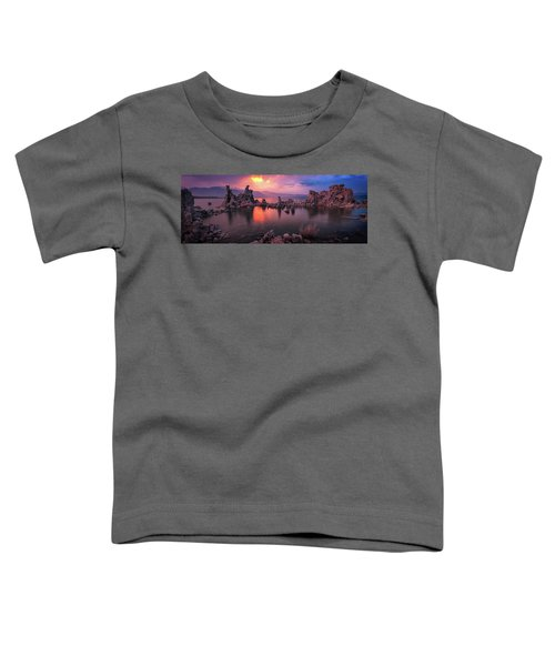 Fireball Toddler T-Shirt