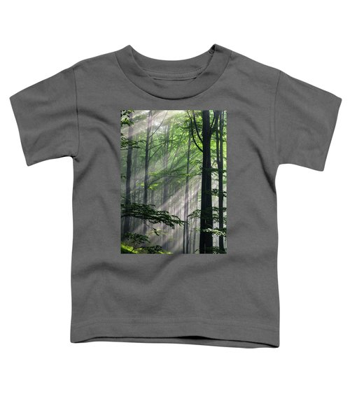 Fleeting Beams Toddler T-Shirt