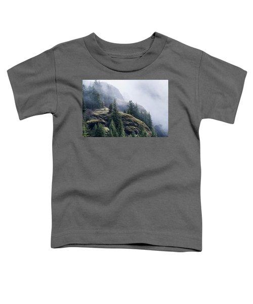 Foggy On Saddle Mountain Toddler T-Shirt