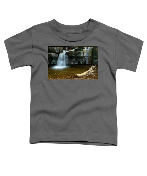 Forged By Nature Toddler T-Shirt