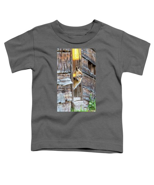 Fox Test  Toddler T-Shirt