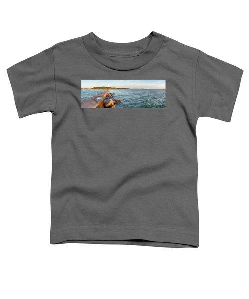 Frankfort Shoreline Panorama Toddler T-Shirt