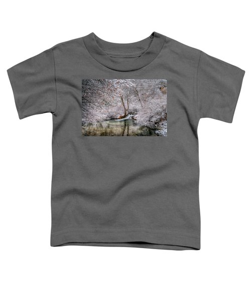 Frosty Pond Toddler T-Shirt