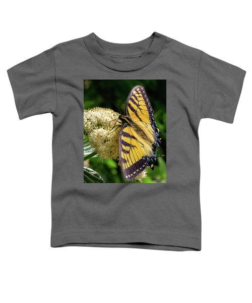 Fuzzy Butterfly Toddler T-Shirt