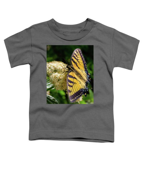 Fuzzy Butterfly Toddler T-Shirt