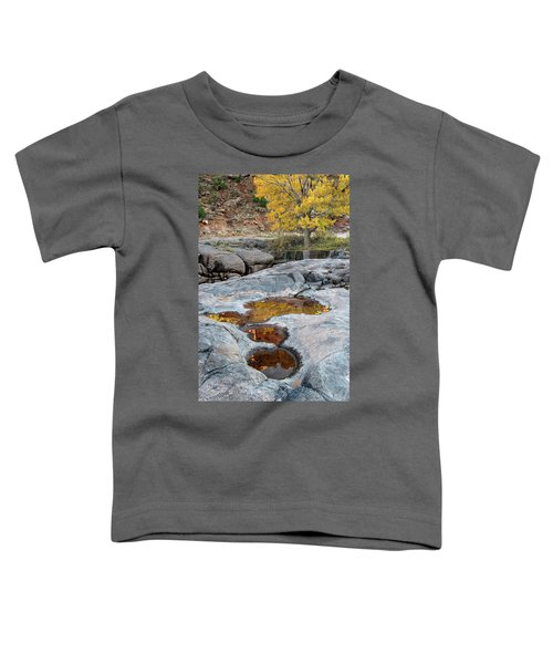 Gold Reflection Toddler T-Shirt