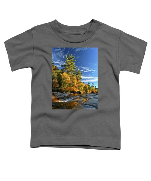 Golden Autumn Light Nh Toddler T-Shirt