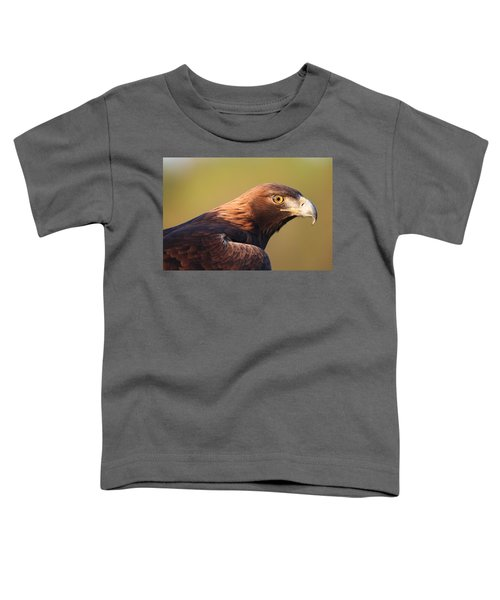 Golden Eagle 5151806 Toddler T-Shirt