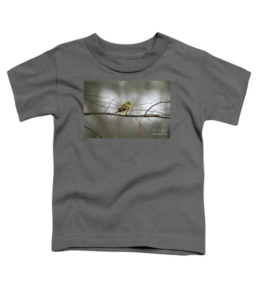 Goldfinch In Winter Looking At You Toddler T-Shirt