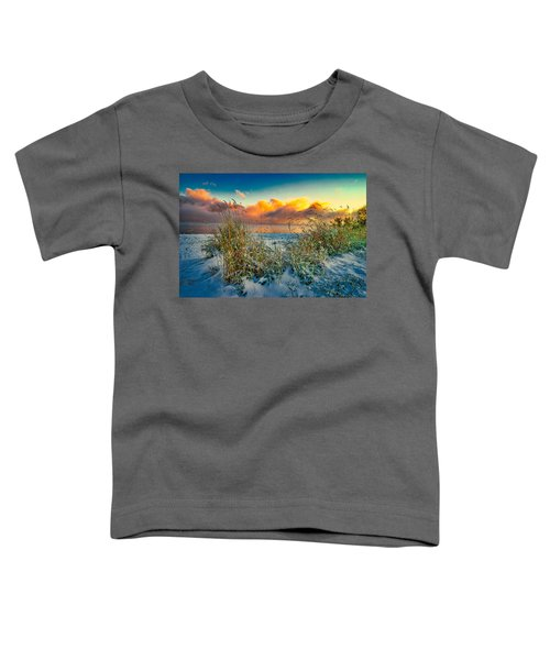 Grass And Snow Sunrise Toddler T-Shirt